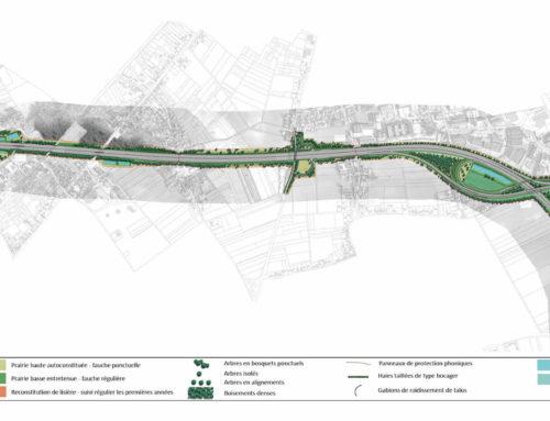 Elargissement de l'autoroute A10 – Orléans Nord